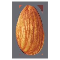 Миндаль PNG