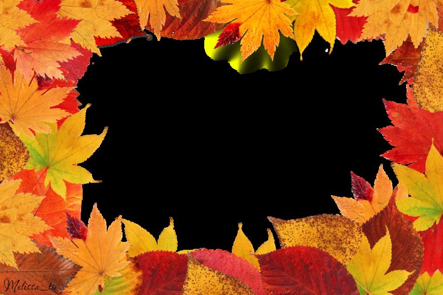 Осенние листья клена PNG фото