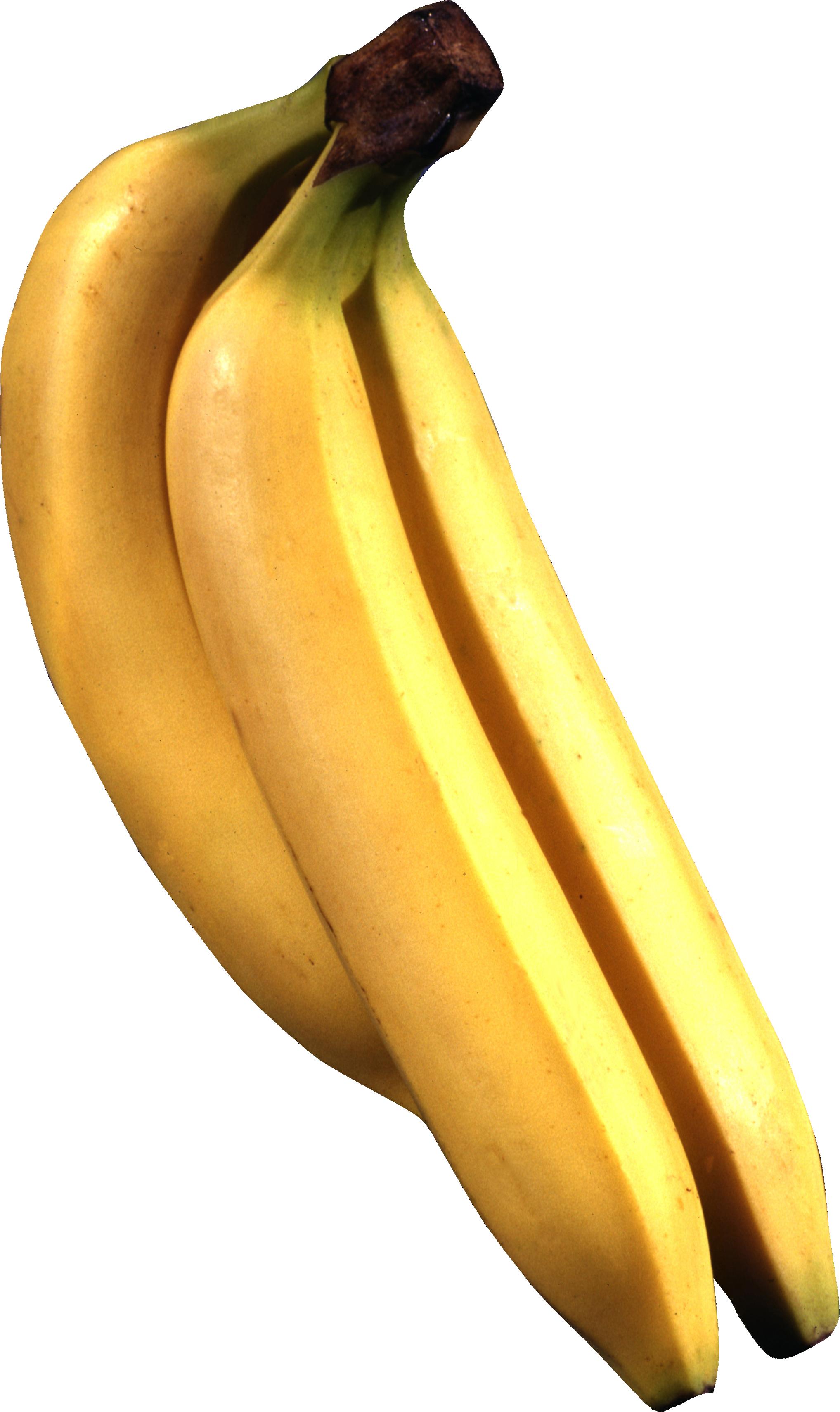 Бананы PNG фото