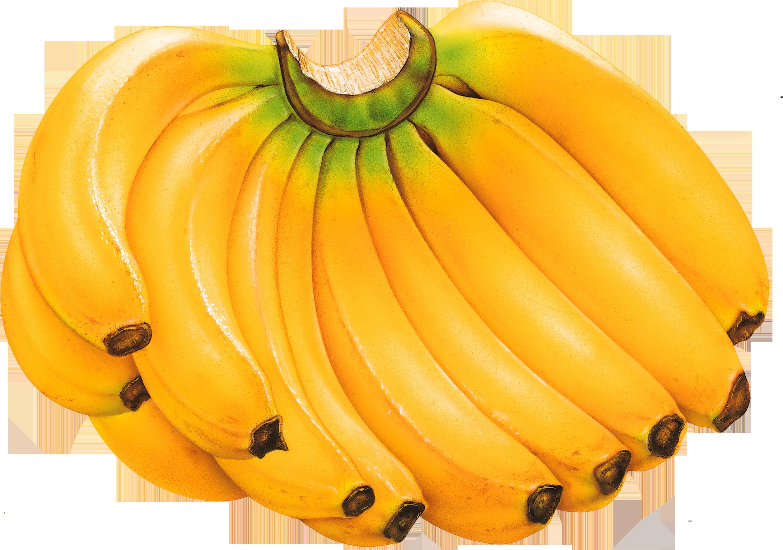 Связка бананов PNG фото, бананы