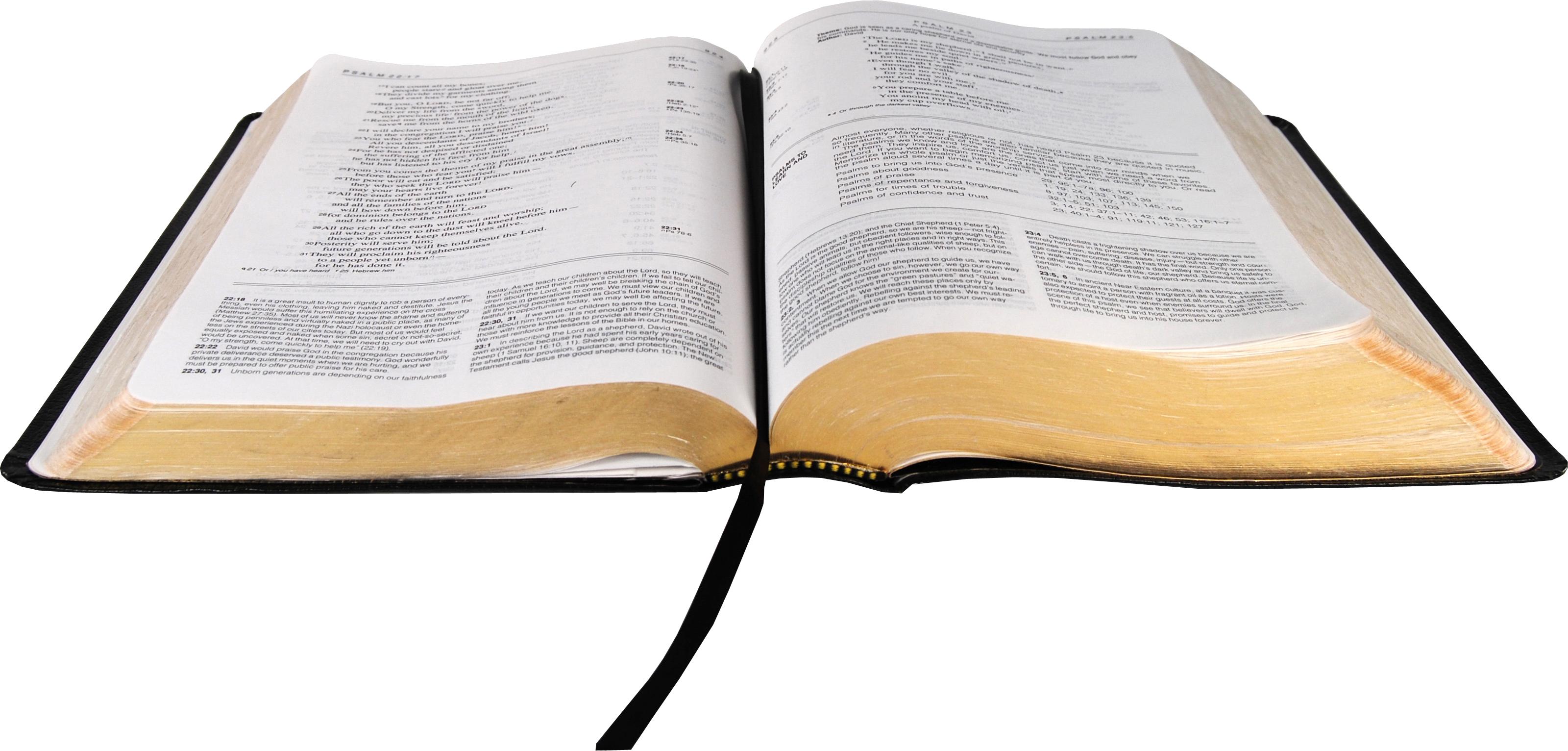 open bible PNG