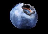Черника, голубика PNG