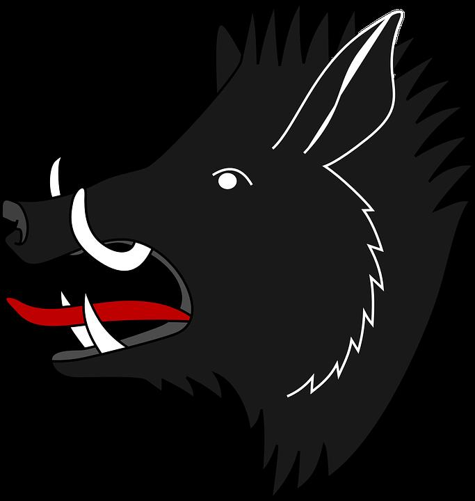 Boar PNG images
