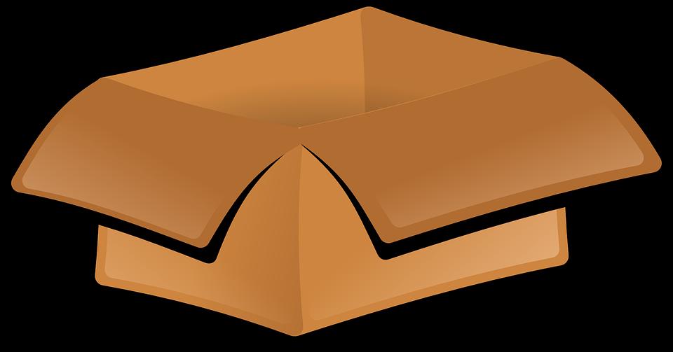 Shoe Box Black Earth Garentee