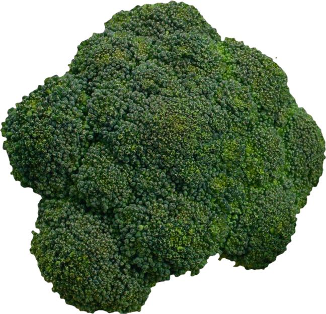 Броколли PNG