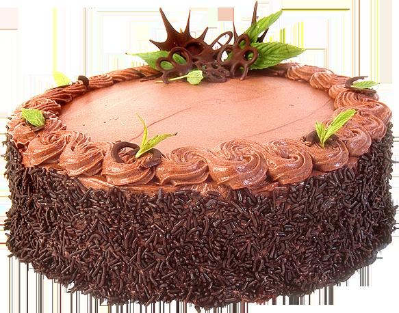 Торт PNG