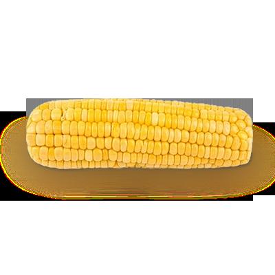 Кукуруза PNG фото