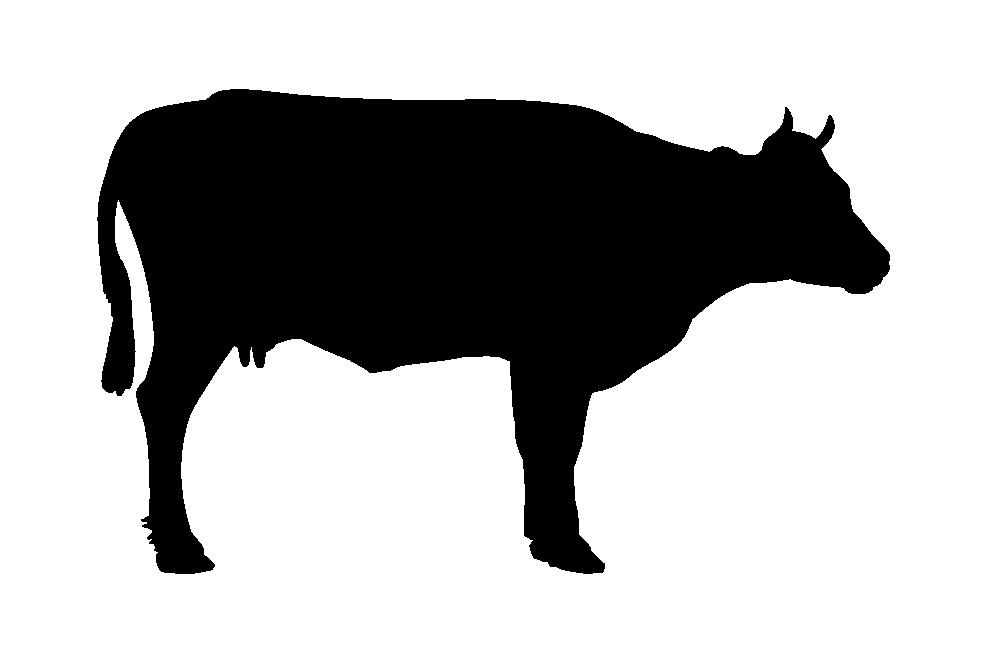 корова черный силуэт PNG фото