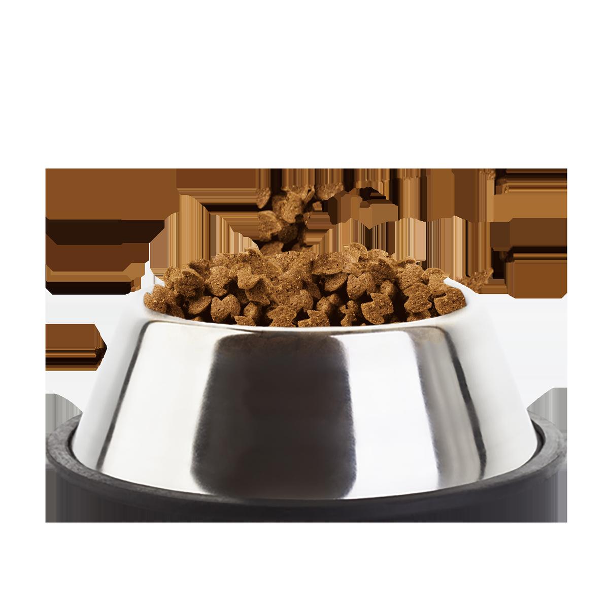 Dog food PNG