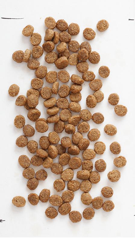 Собачий корм PNG