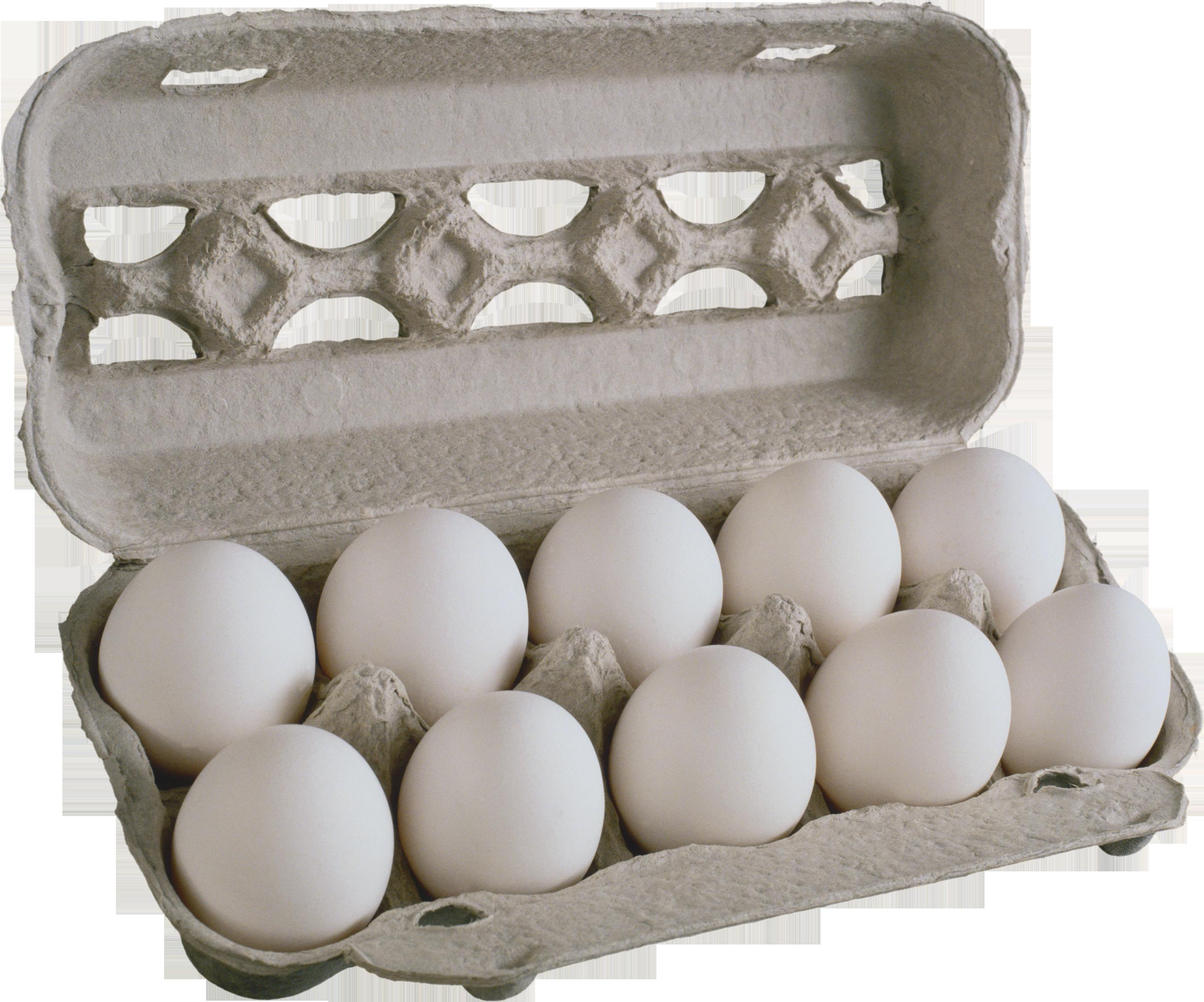 Яйца PNG фото