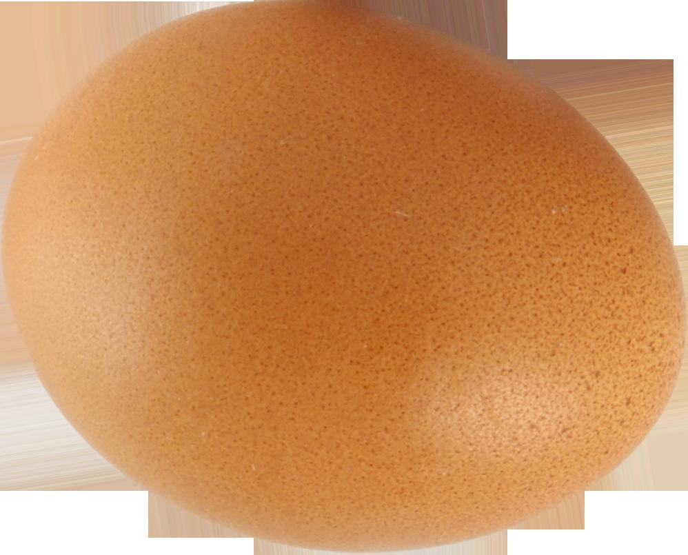 Яйцо PNG фото