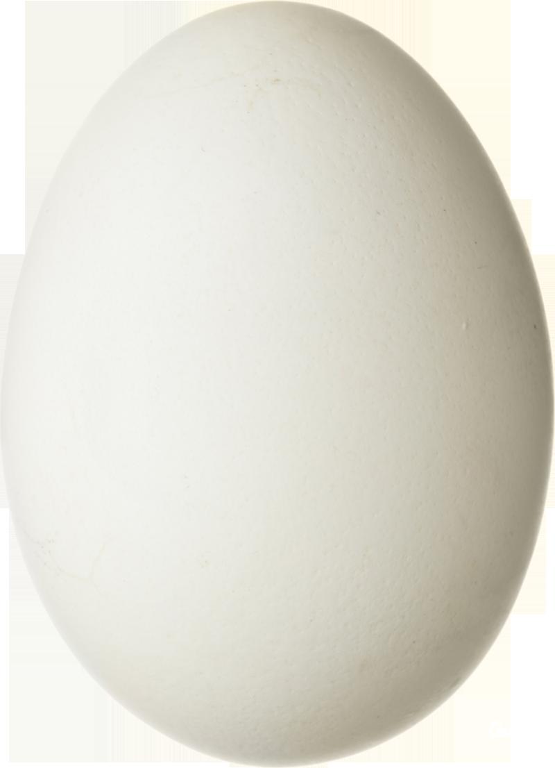 Egg PNG image