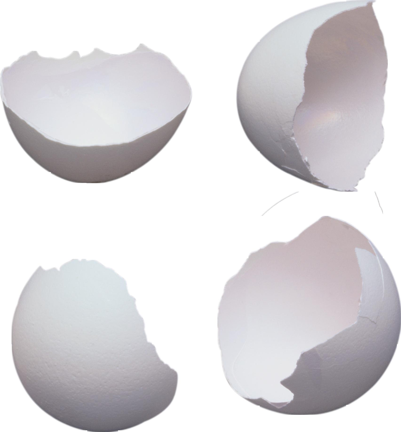 Разбитое яйцо PNG фото