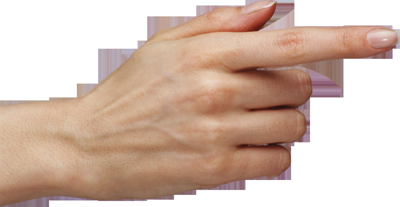 Палец PNG фото