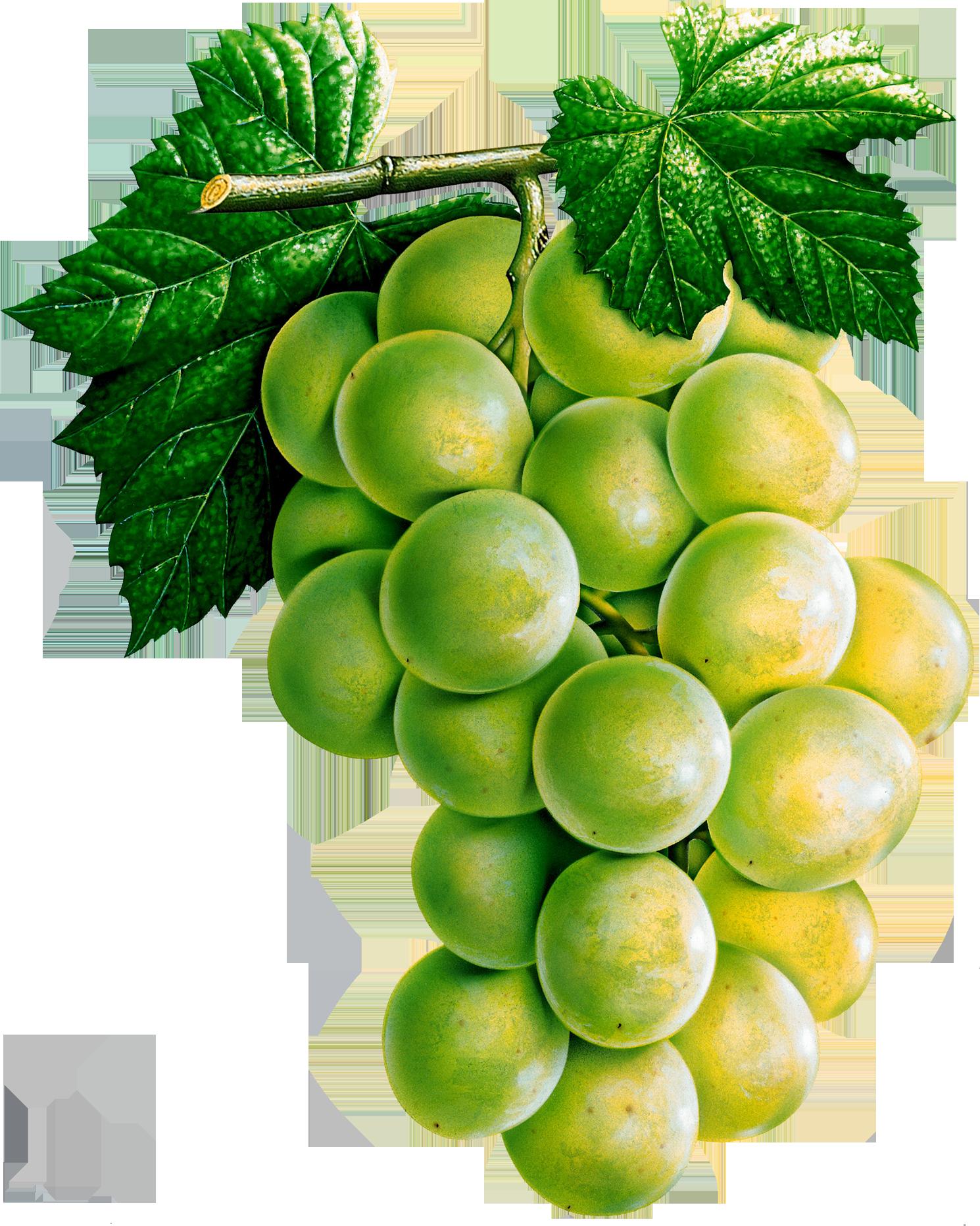 Виноград PNG фото