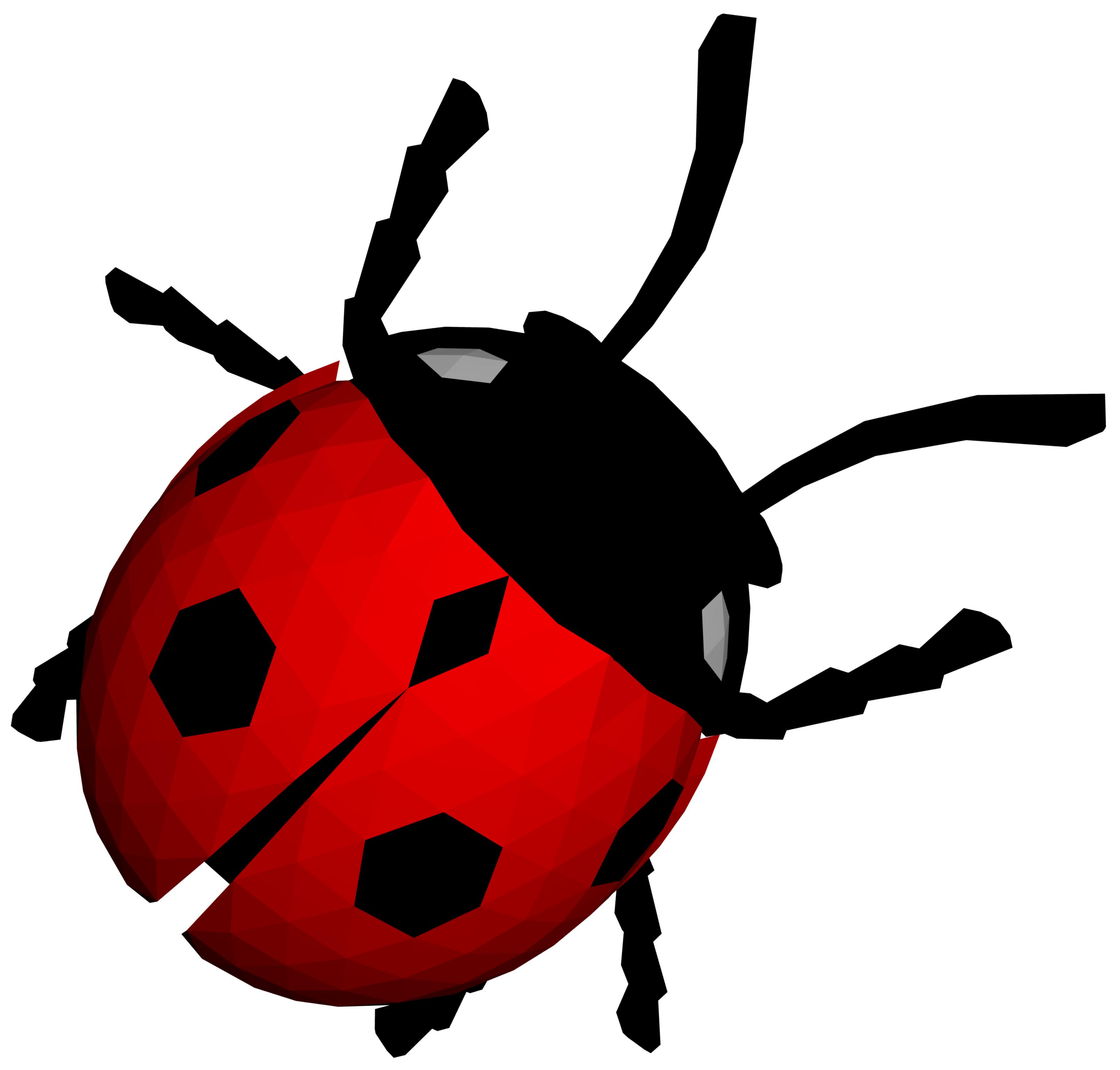 ladybug png image free download