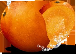 Mango PNG image free Download