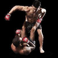 Смешанные боевые искусства PNG, ММА PNG
