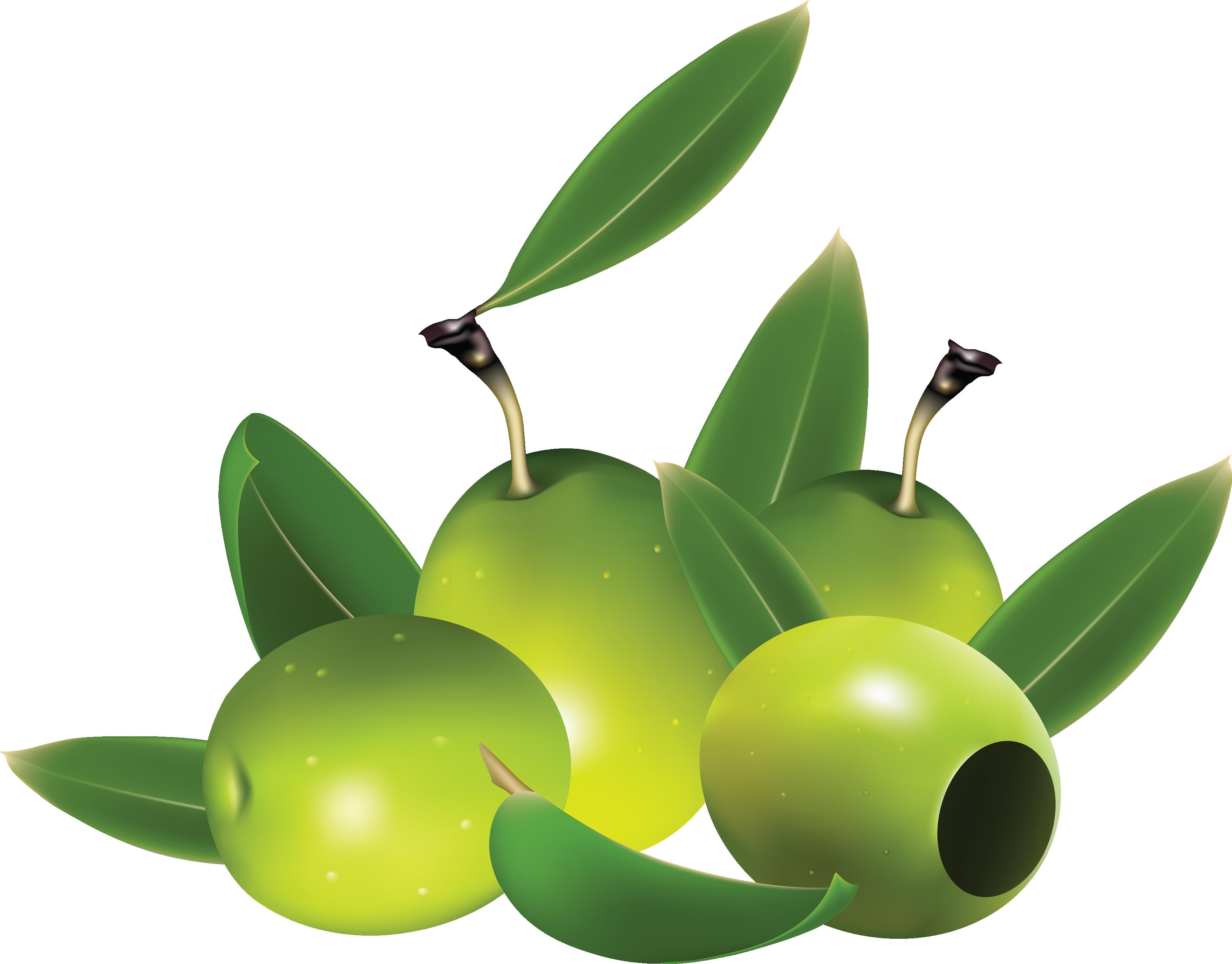 Зеленые оливки PNG