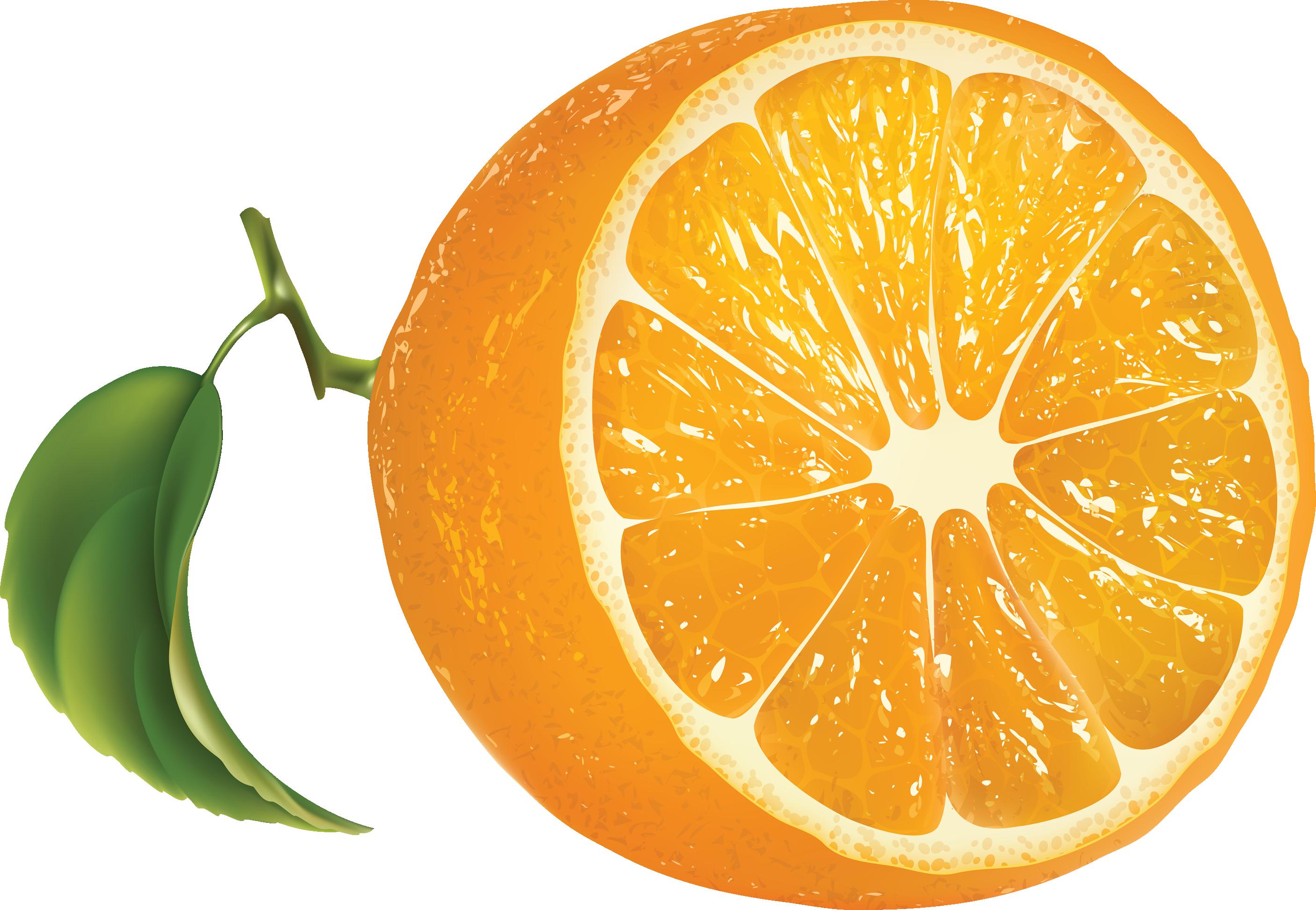 Апельсин PNG фото