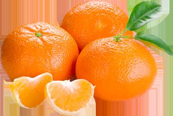 Апельсины PNG фото