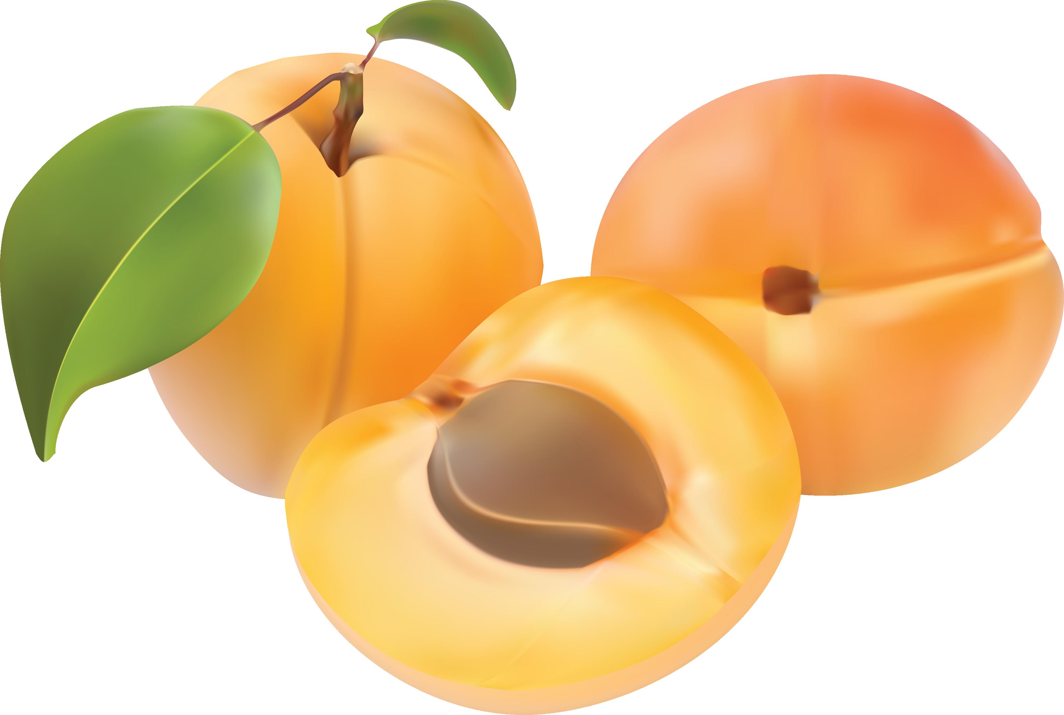 Персик PNG фото