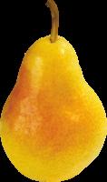 спелая груша PNG фото