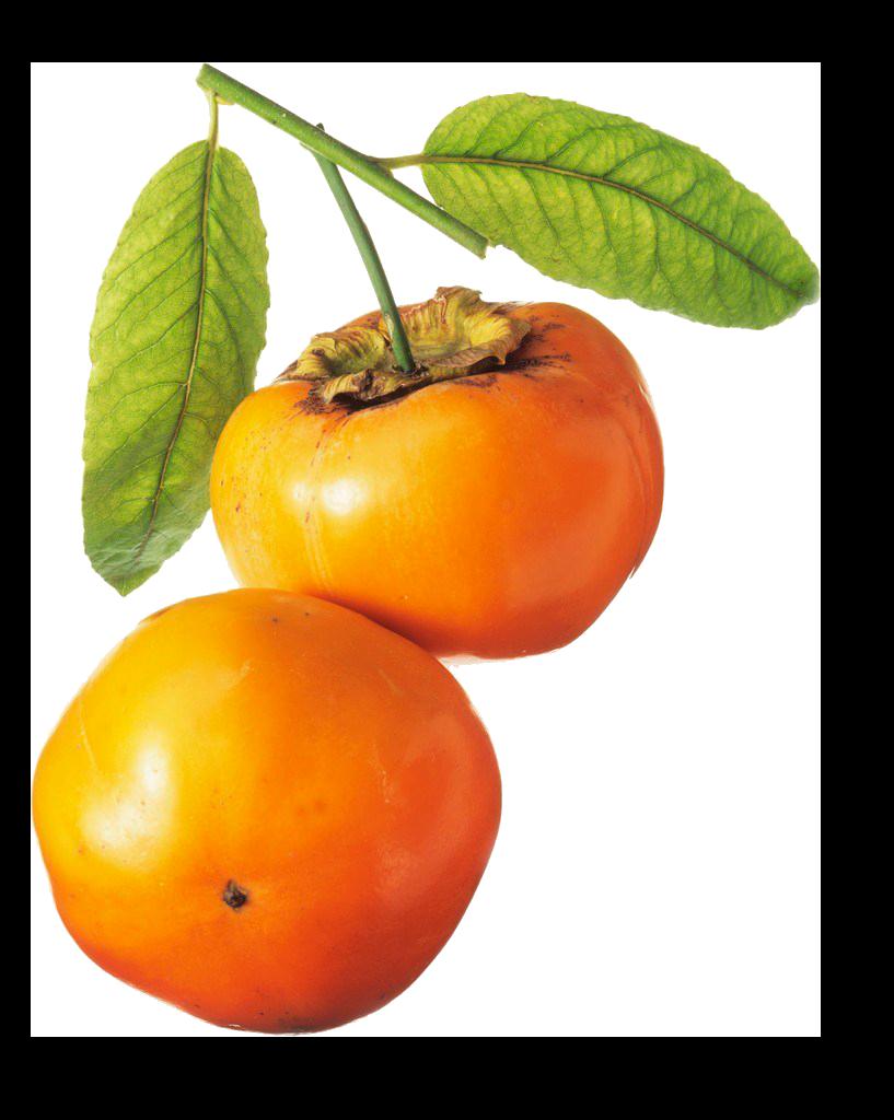 Хурма PNG