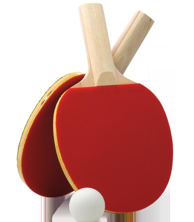 Настольный теннис ракета PNG