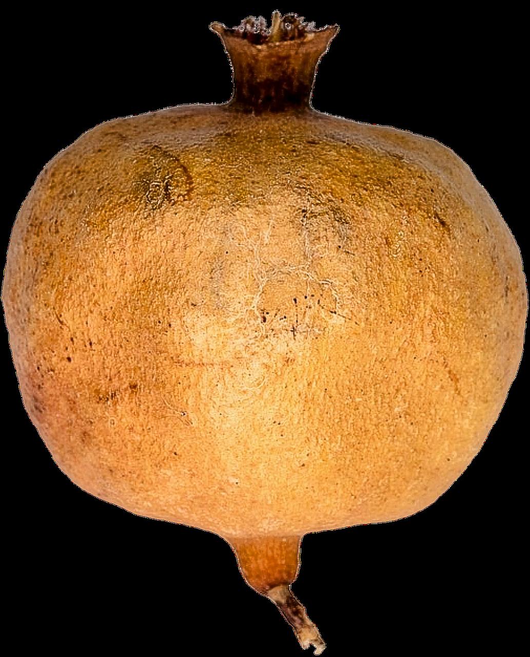 Гранат PNG