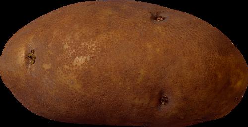 Картошка PNG фото
