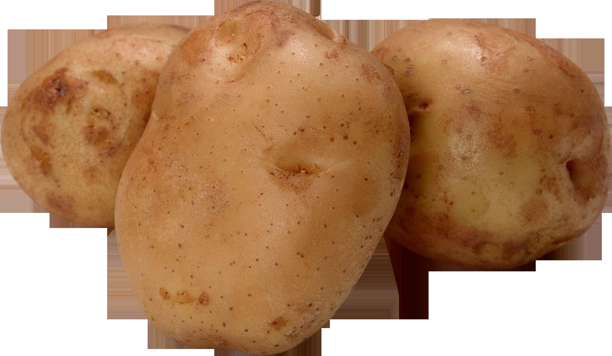 Картофель PNG фото