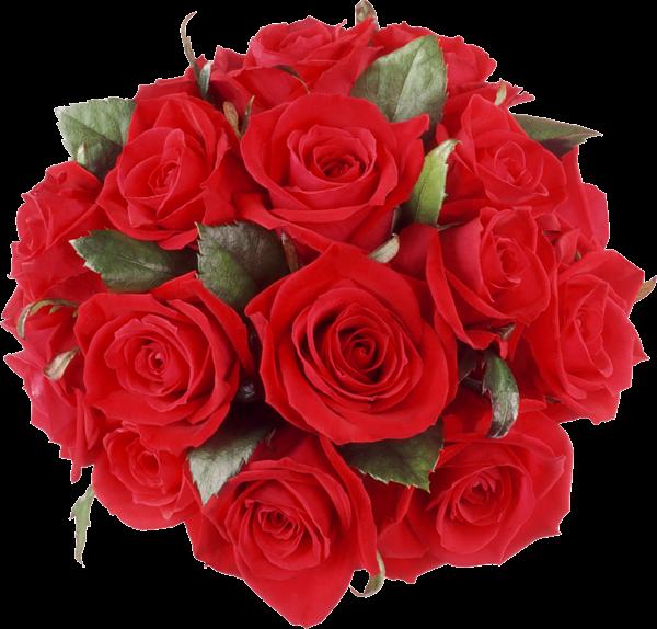 Розы PNG