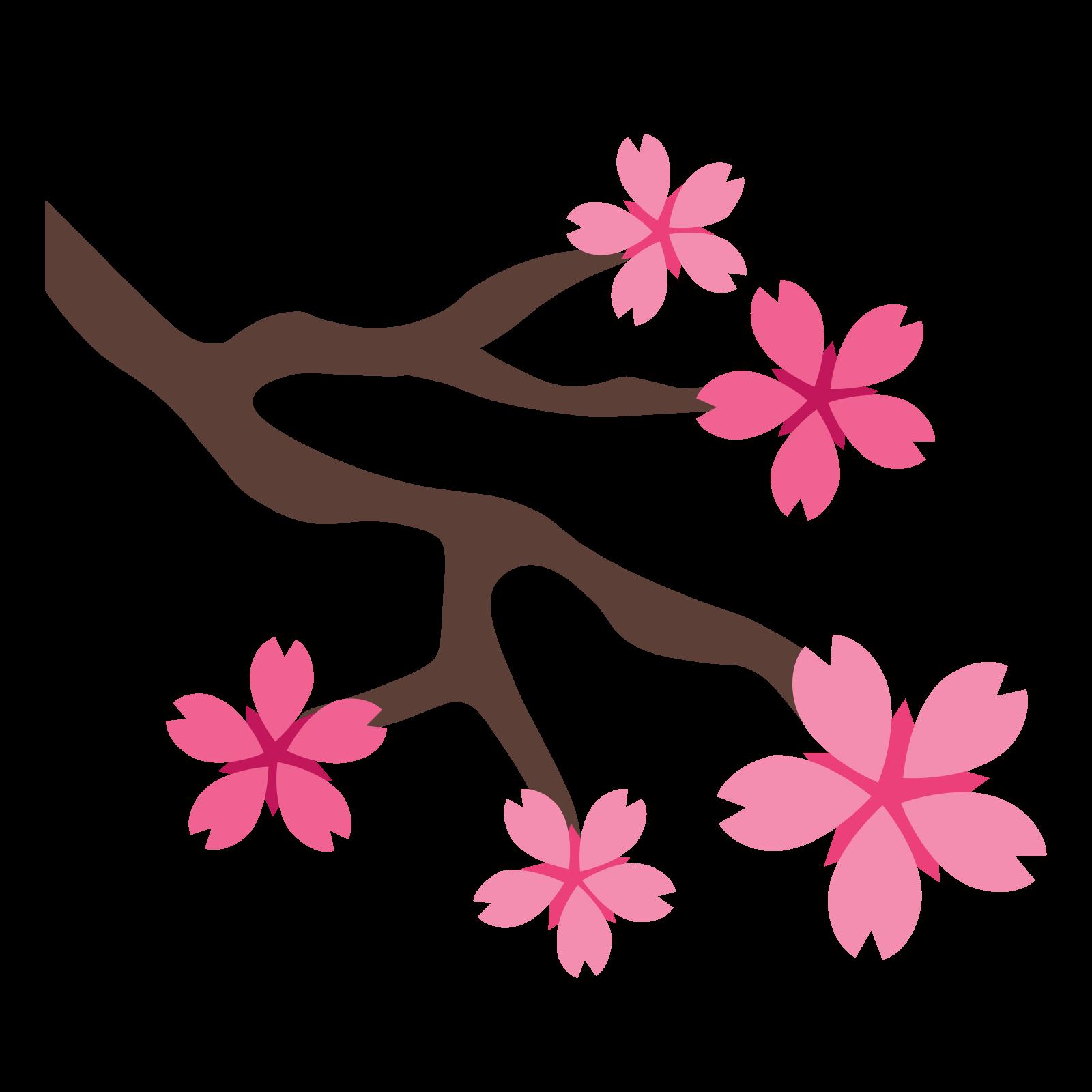 Сакура PNG