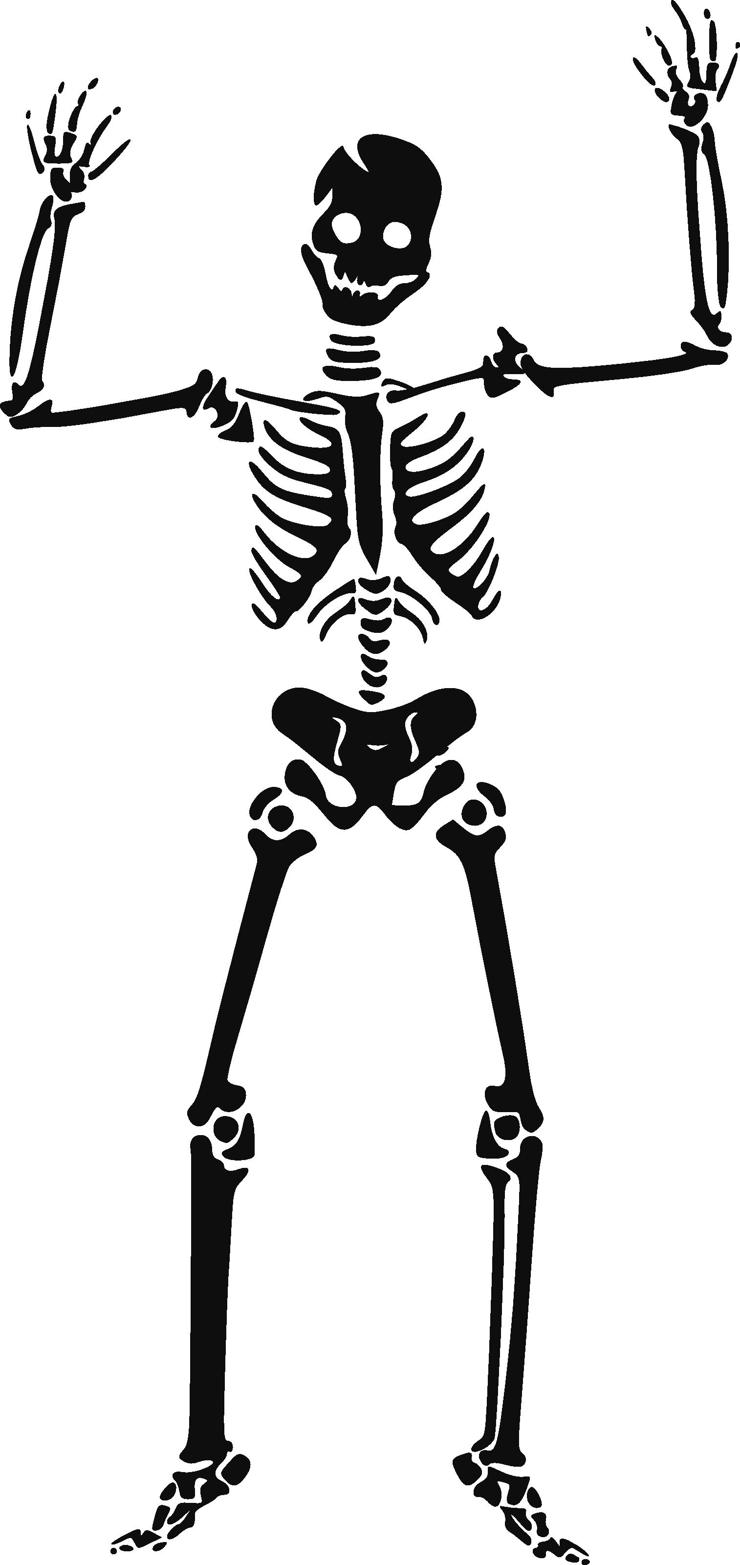 Skeleton siluet PNG image