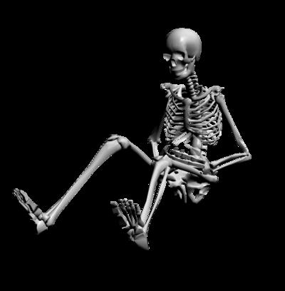 Скелет PNG фото