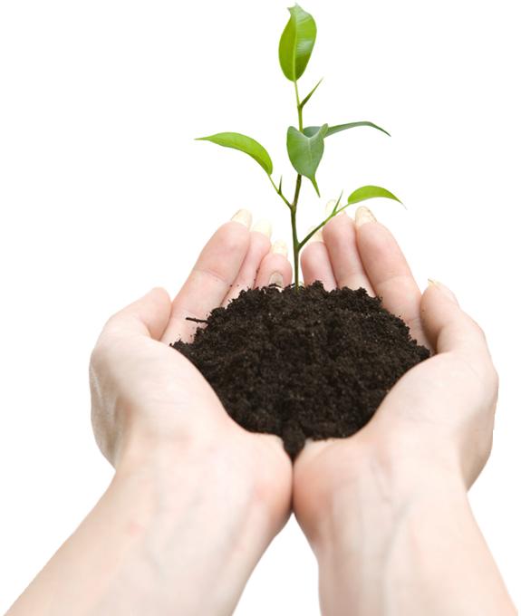 Почва, грунт в руках PNG