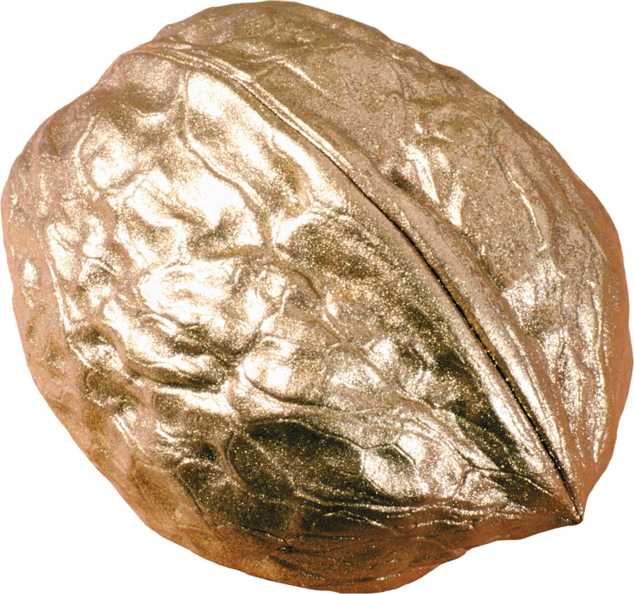 Грецкий орех PNG