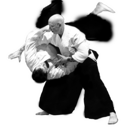 Aikido PNG