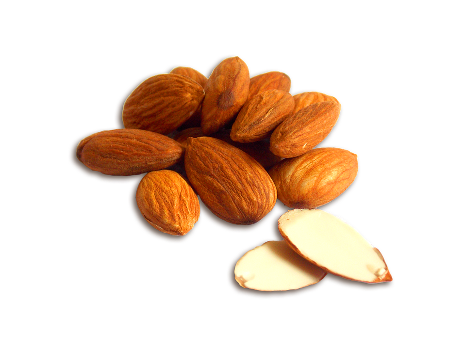 Almond PNG