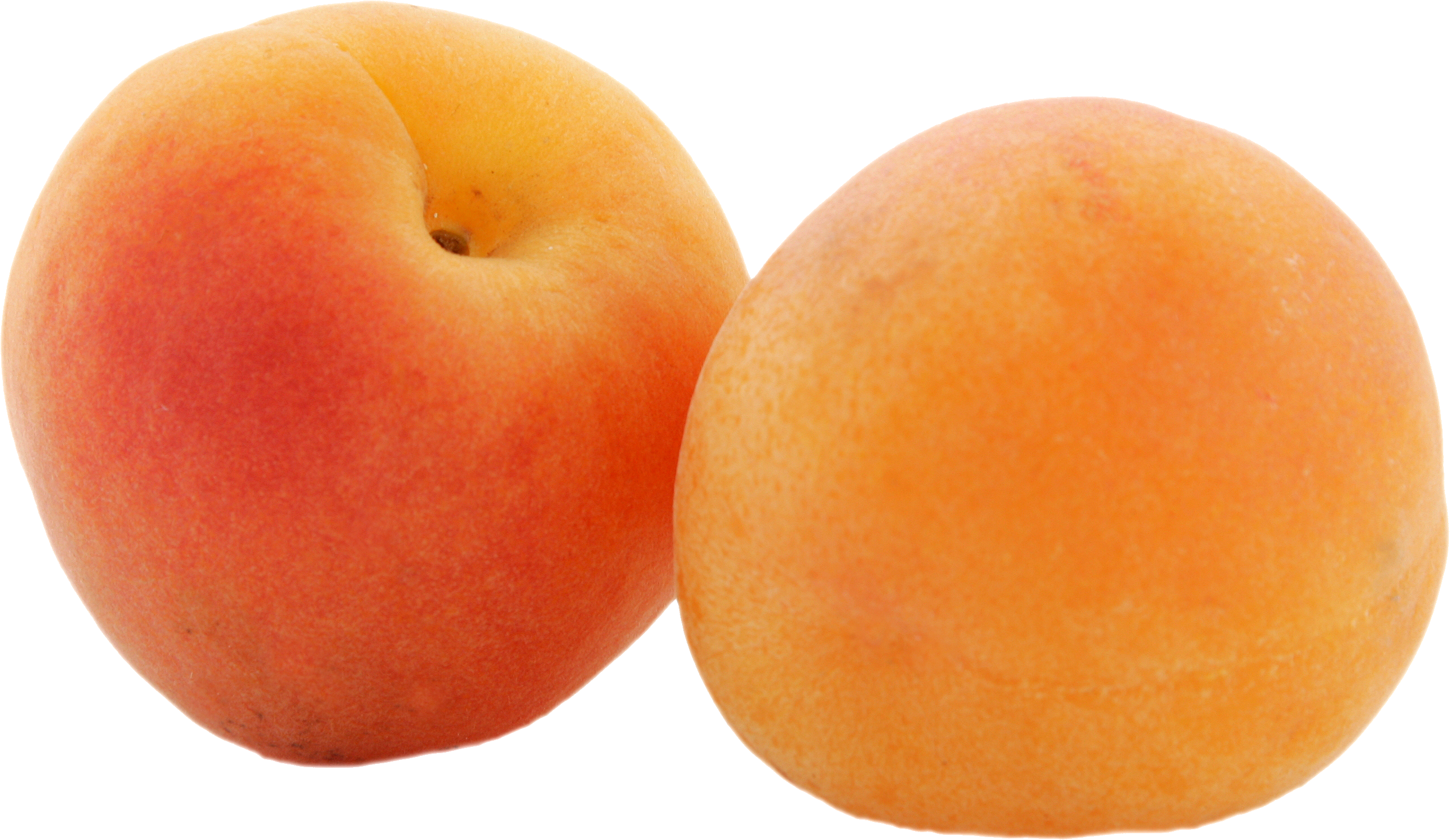 Apricot PNG images free download