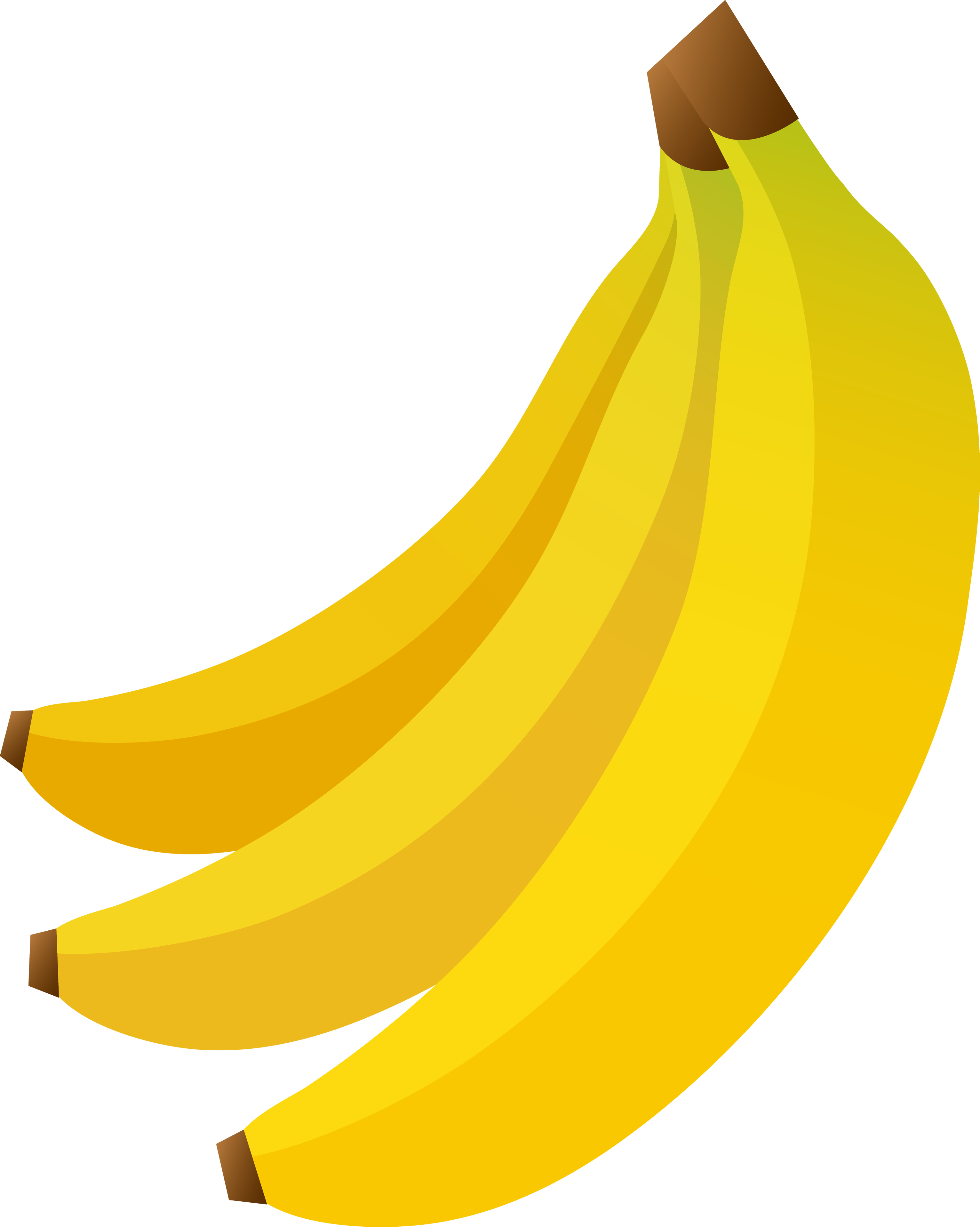 banana tree drawing png - photo #11