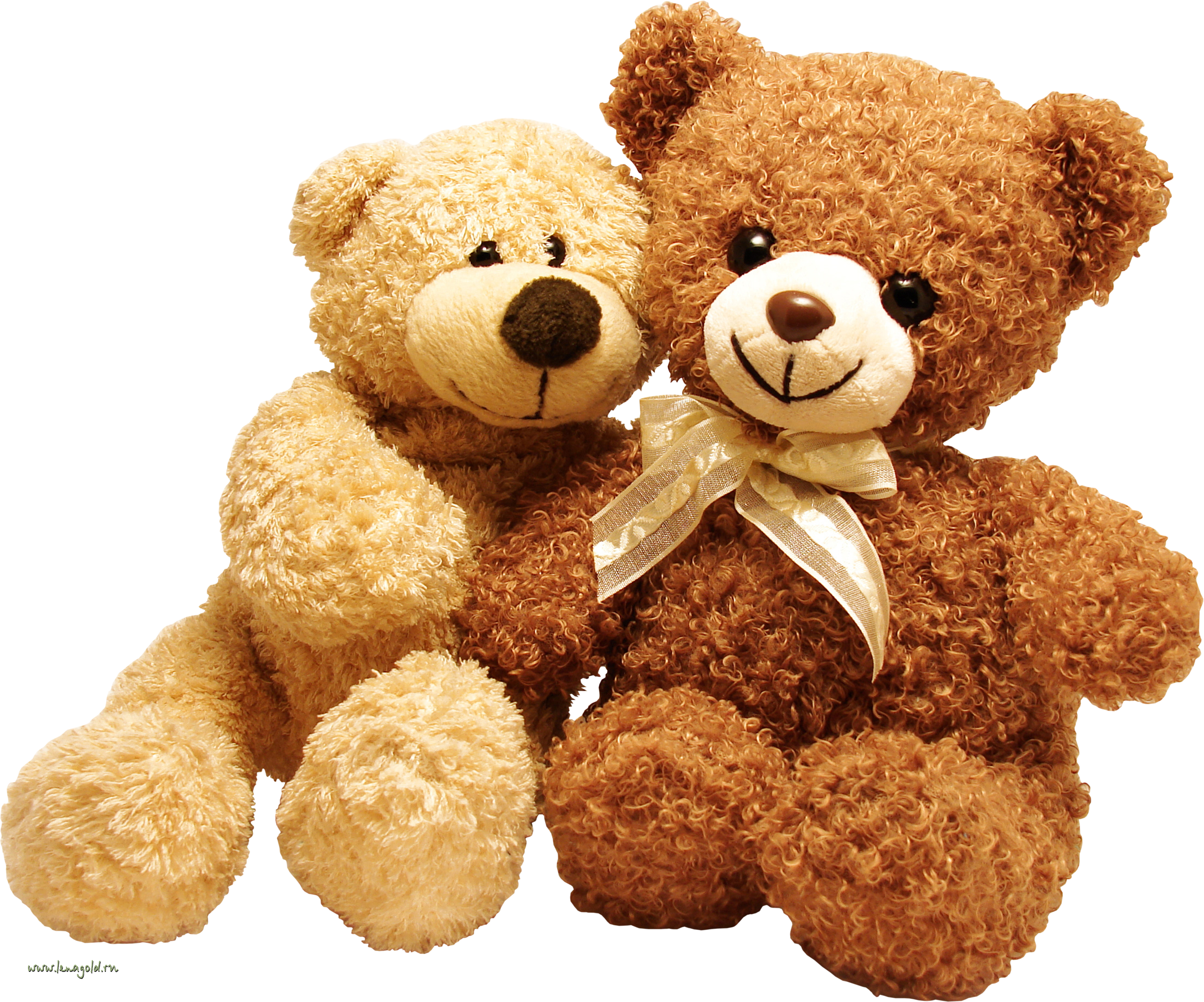 toys bears PNG image
