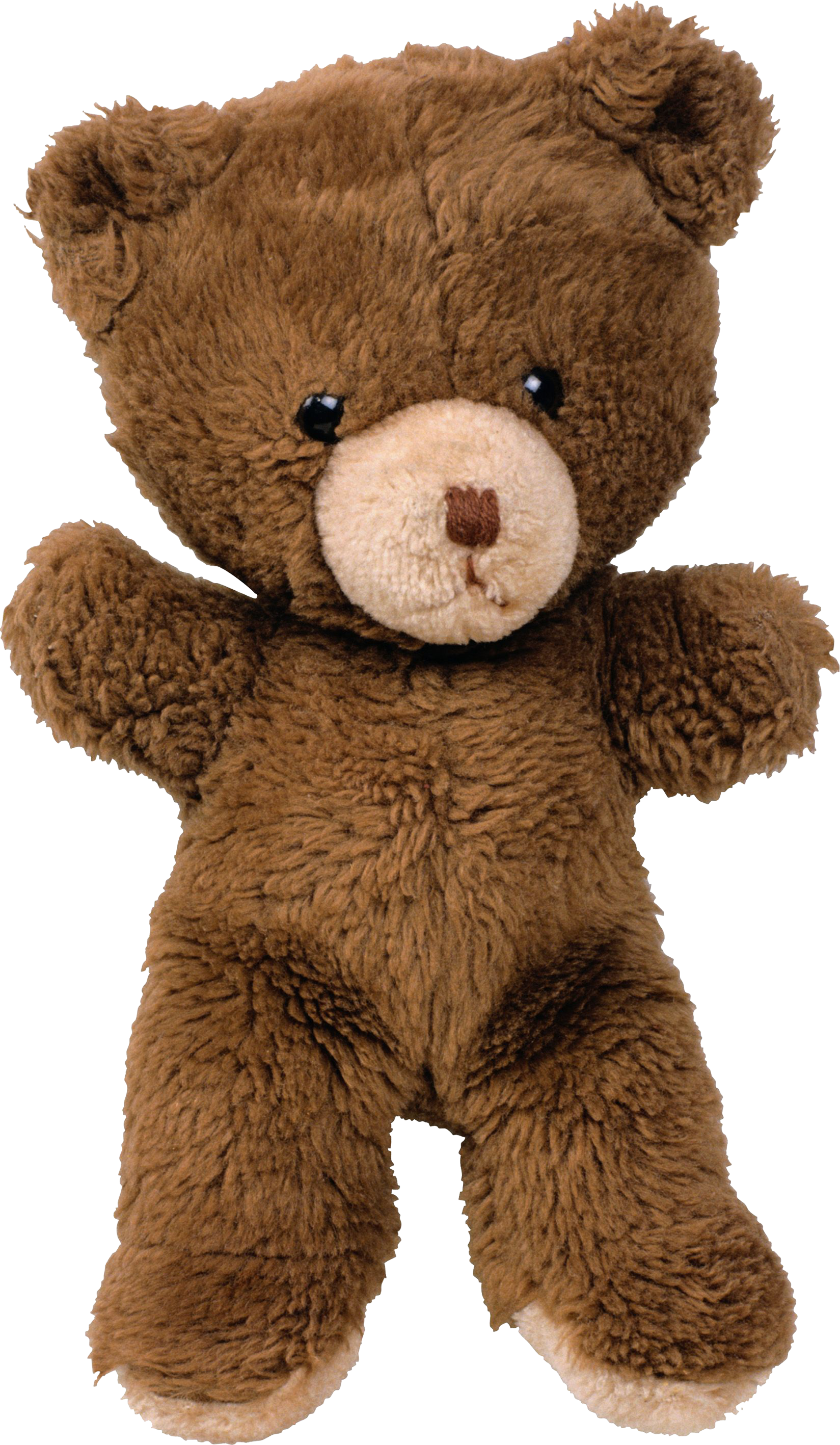toy bear PNG image