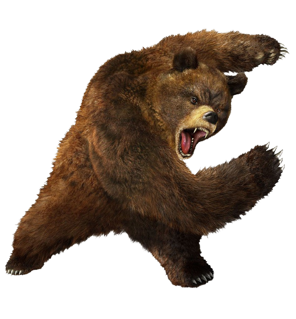brown greezly bear PNG image