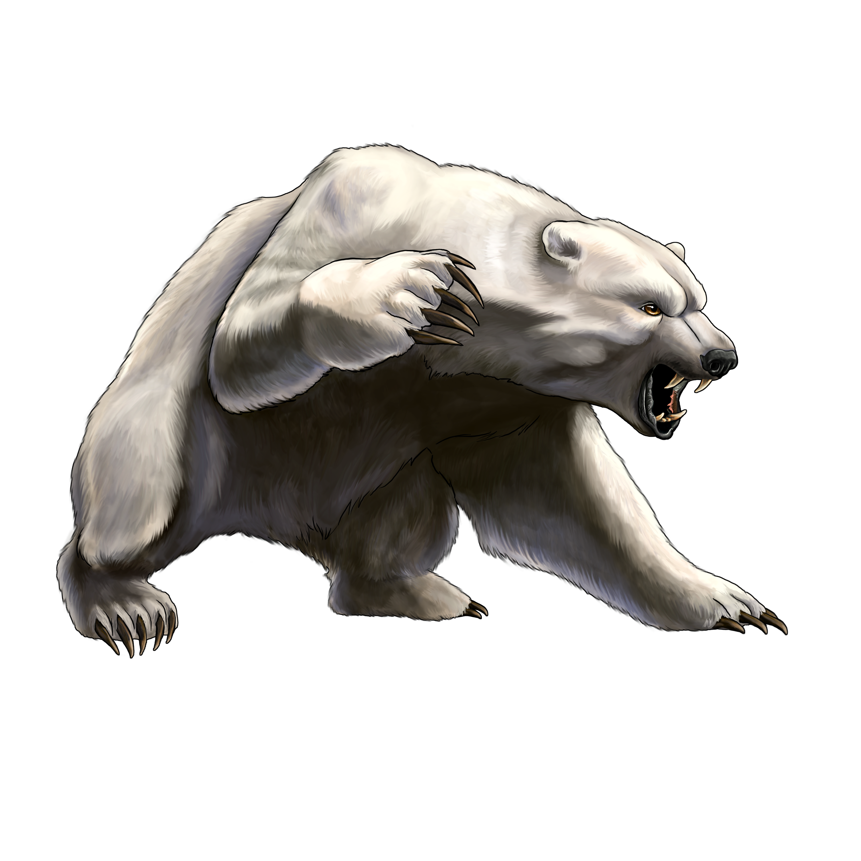 white angry bear PNG image