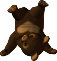 little bear PNG image