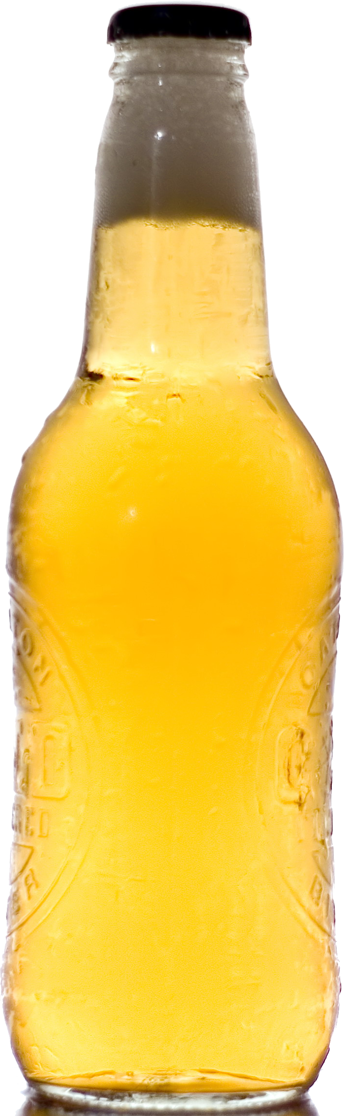 Beer bottle PNG image, download picture