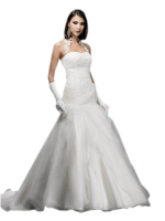 Bride dress PNG